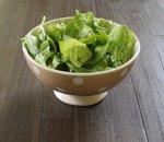 Salade kom schaal | Stip | Taupe