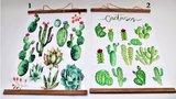Tuinposter/Buitendoek Cactussen 2 assorti