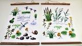Tuinposter/Buitendoek Weiland  2 assorti_