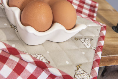 Eierhouder   6  eieren   wit