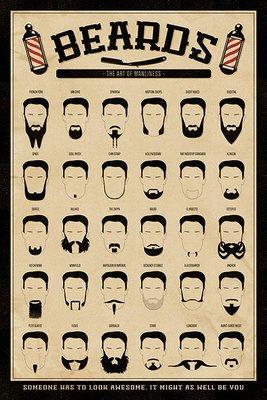 Poster met verschillende baarden