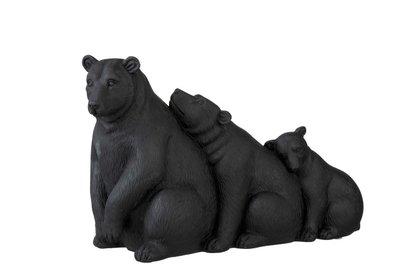 Beren op een rij  J Line