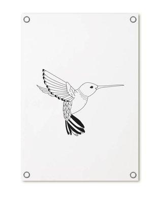 Tuinposter met kolibrie ZOEDT