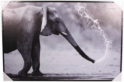 Canvas Olifant