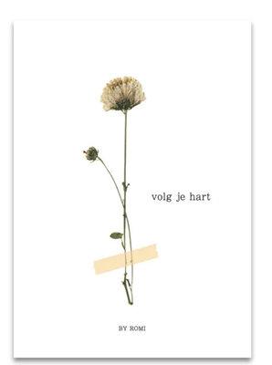 Kaart /  Volg je hart