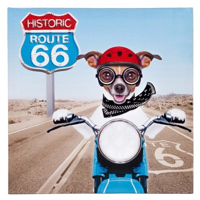 Canvasdoek Route 66 | 50X50 LED