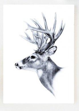 Kaart | O Deer