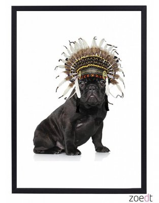 Poster | Hond | Indianentooi