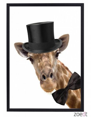 Poster | Giraf | Hoge Hoed