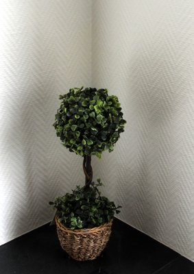 Buxus decoratie