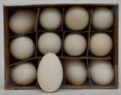 Ganzeneieren 8 stuks Pasen