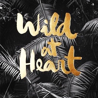 Photoblock | WILD AT HEART