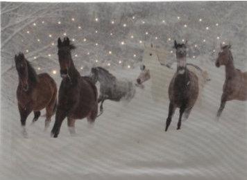 paarden op canvas met led
