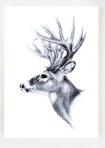 Kaart   O Deer