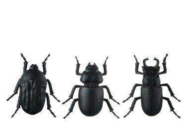 INSECTEN | ZWART 10 X 9 X 4 CM | ASSORTIMENT VAN 3  Muurdecoratie.  Materiaal: Polystone  Kleur: zwart  Merk: J Line