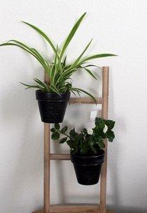 Bloempotten 2 aan ladder Hoogte 49 cm.   Plantenstandaard